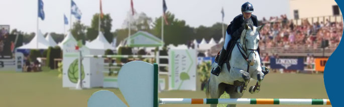 One of Sweden´s largets international sport events where Swedish and international rider elite compete in jumping and dressage.